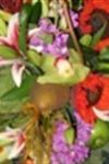 Design House of Flowers - 4