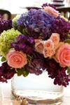 House of Plants Florist LLC - 2