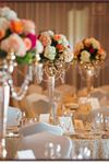 Amaryllis Floral and Event Design - 6