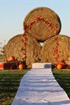 Cimarron Fields Wedding And Event Barn - 3