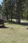 Lonesome Dove Guest Ranch - 4
