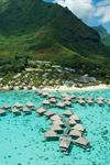 Hilton Moorea Lagoon Resort and Spa - 7