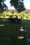 Heisen House Vineyards - 7