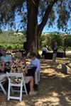 deLorimier Winery - 3
