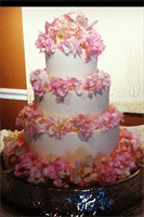 Susie's Specialty Wedding Cakes, in Kingsport, Tennessee