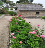 Old Whaling Station Historic Adobe And Gardens is a  World Class Wedding Venues Gold Member