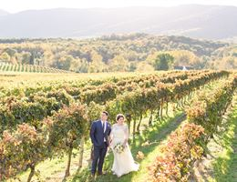 Veritas Vineyard and Winery is a  World Class Wedding Venues Gold Member