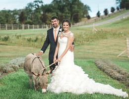 Destiny Hill Farm is a  World Class Wedding Venues Gold Member