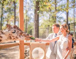 Birmingham Zoo is a  World Class Wedding Venues Gold Member