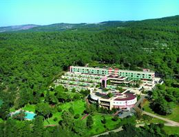 Carmel Forest Spa Resort is a  World Class Wedding Venues Gold Member