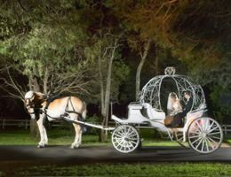 Savannah Woods Plantation is a  World Class Wedding Venues Gold Member