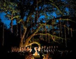 Brandon Hall Plantation is a  World Class Wedding Venues Gold Member