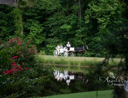 Hollow Creek Plantation is a  World Class Wedding Venues Gold Member